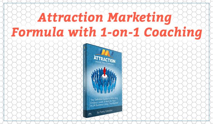 network marketing attraction marketing
